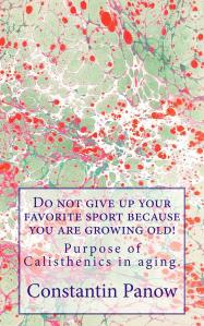 Do_not_give_up_your__Cover_for_Kindle (3)